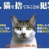 動物愛護法改正2020