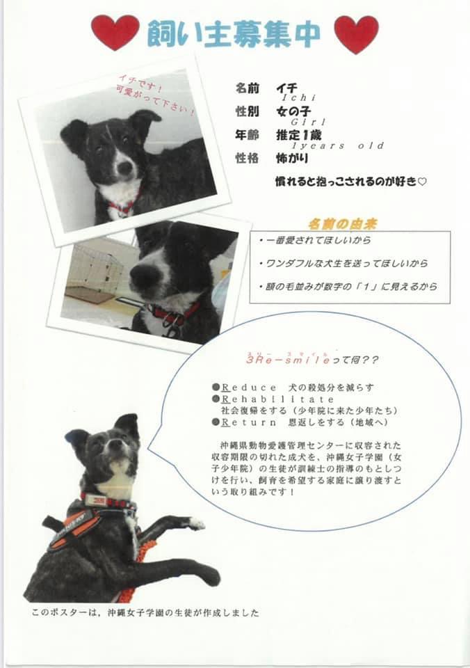 生徒作ポスター第6弾